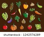 vegetables set collection... | Shutterstock .eps vector #1242576289