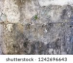 texture of old grunge cracked... | Shutterstock . vector #1242696643