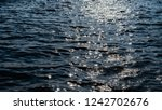blue sea surface for background.... | Shutterstock . vector #1242702676