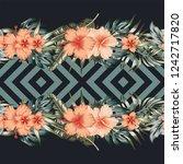 tropical flowers hibiscus... | Shutterstock .eps vector #1242717820