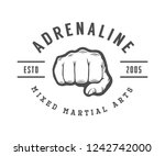vintage mixed martial arts logo ... | Shutterstock . vector #1242742000