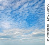 light cumulus clouds in the... | Shutterstock . vector #1242760900