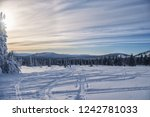 dawn in the winter in the... | Shutterstock . vector #1242781033