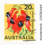 Small photo of AUSTRALIA - CIRCA 1968: A stamp printed in Australia shows Sturts desert pea (Clianthus tormosus), circa 1968