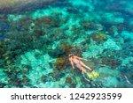 woman snorkeling in clear...   Shutterstock . vector #1242923599