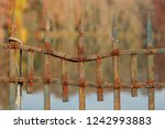 old  rusty fence in an autumn... | Shutterstock . vector #1242993883
