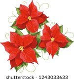 red poinsettias with leaves ... | Shutterstock .eps vector #1243033633