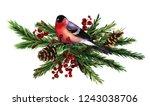 christmas tree  bullfinches ... | Shutterstock . vector #1243038706