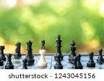 miniature people businessmen...   Shutterstock . vector #1243045156