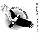 flying mighty black raven  crow ... | Shutterstock .eps vector #1243075159