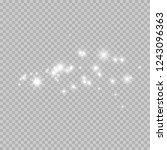 christmas dust  thousands of... | Shutterstock .eps vector #1243096363