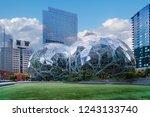 seattle  washington  november...   Shutterstock . vector #1243133740