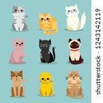Cute Vector Illustration Of Cat ...