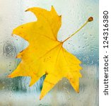 Autumn Maple Leaf On Glass Wit...