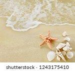 starfish and shells on sandy... | Shutterstock . vector #1243175410