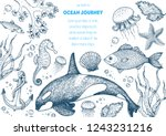 sea animals hand drawn... | Shutterstock .eps vector #1243231216