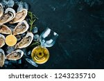 fresh oysters with ice and... | Shutterstock . vector #1243235710