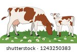 cow isolated on white  hand... | Shutterstock .eps vector #1243250383