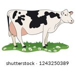cow isolated on white  hand... | Shutterstock .eps vector #1243250389