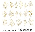 gold tropical leaves isolated... | Shutterstock . vector #1243303156