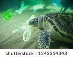 sea turtle eat plastic bag... | Shutterstock . vector #1243314343