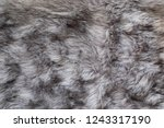 disheveled grey faux fur fluffy ... | Shutterstock . vector #1243317190