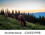 Summer Landscape With Horse In...