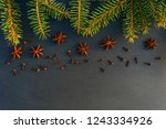 christmas tree spruce branches... | Shutterstock . vector #1243334926