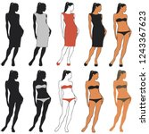vector silhouettes of beautiful ... | Shutterstock .eps vector #1243367623