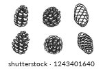 set of pine cones silhouette on ... | Shutterstock .eps vector #1243401640