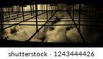 structural framework with dark... | Shutterstock . vector #1243444426