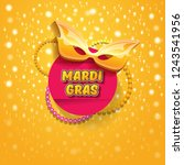 vector new orleans mardi gras... | Shutterstock .eps vector #1243541956