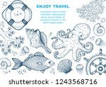 sea animals hand drawn... | Shutterstock .eps vector #1243568716