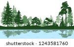 forest  park  alley. landscape... | Shutterstock .eps vector #1243581760