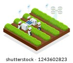 isometric automatic controlled... | Shutterstock .eps vector #1243602823