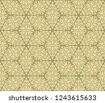 retro intricate pattern  | Shutterstock .eps vector #1243615633