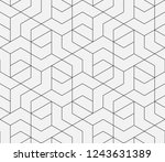 pattern with thin straight... | Shutterstock .eps vector #1243631389