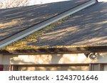 close up rain gutter on... | Shutterstock . vector #1243701646