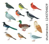 Stock vector collection of vector illustrations city birds 1243704829