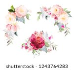 set of vector floral elements... | Shutterstock .eps vector #1243764283