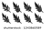 set of pine leaf with pine... | Shutterstock .eps vector #1243860589