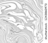 abstract black and white... | Shutterstock . vector #1243860973