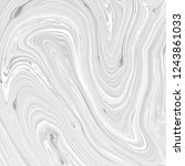 abstract black and white... | Shutterstock . vector #1243861033