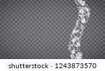 isolated snowflakes on... | Shutterstock .eps vector #1243873570