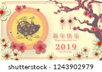 happy chinese new year 2019... | Shutterstock .eps vector #1243902979