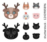 animal muzzle set collection... | Shutterstock . vector #1243985896