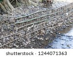 local made of rock gabion on... | Shutterstock . vector #1244071363