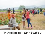 blurry image of tourists in... | Shutterstock . vector #1244132866