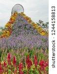 beautiful flowers on bridge to... | Shutterstock . vector #1244158813