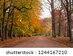 empty lane in a public park on... | Shutterstock . vector #1244167210